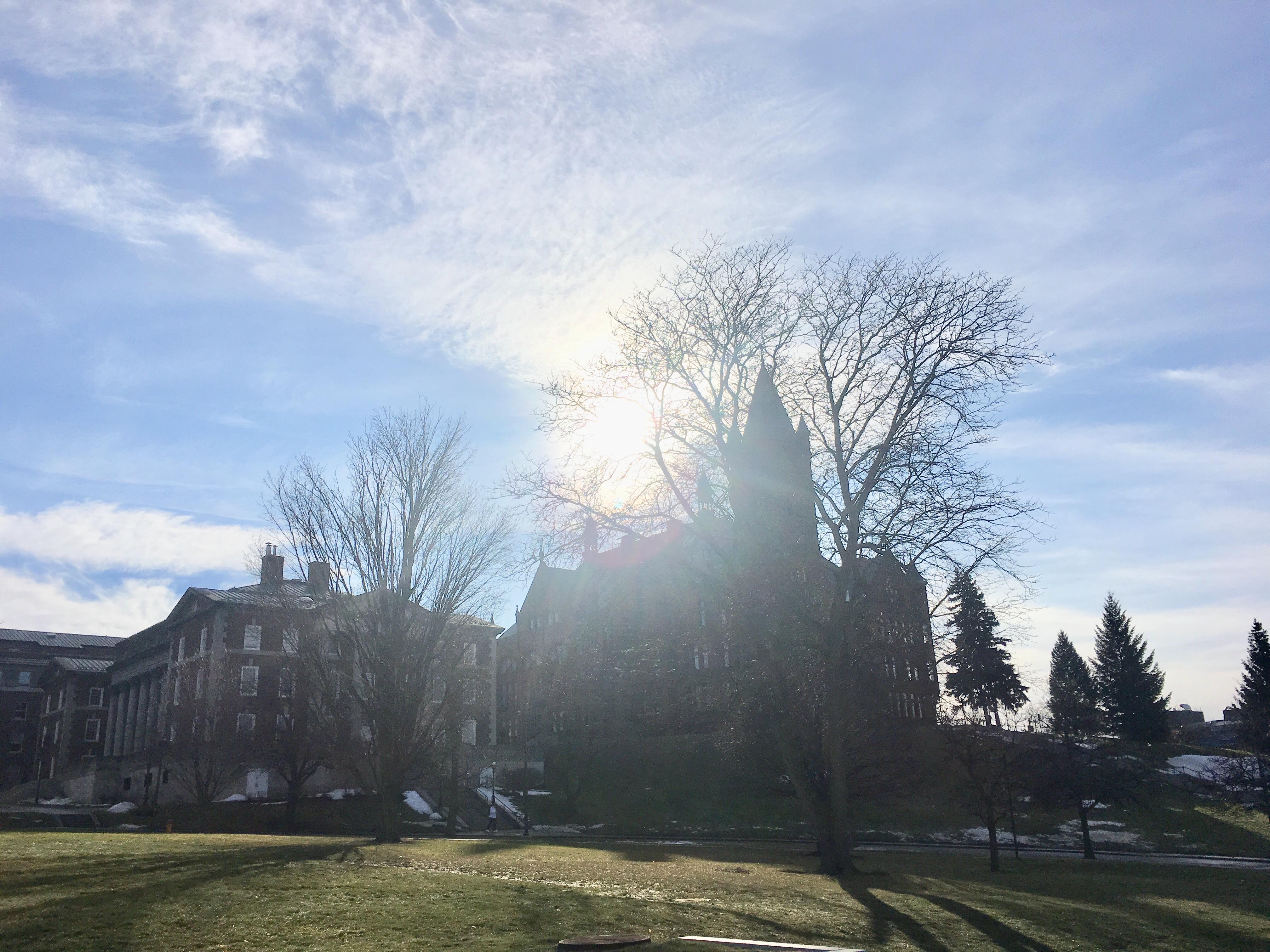 Sunteased, Syracuse University